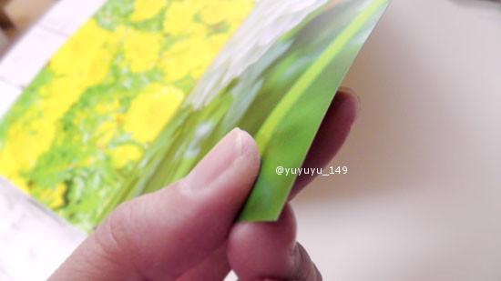 mybook09.jpg