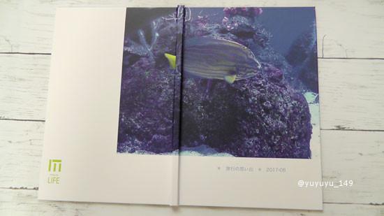 mybook11.jpg