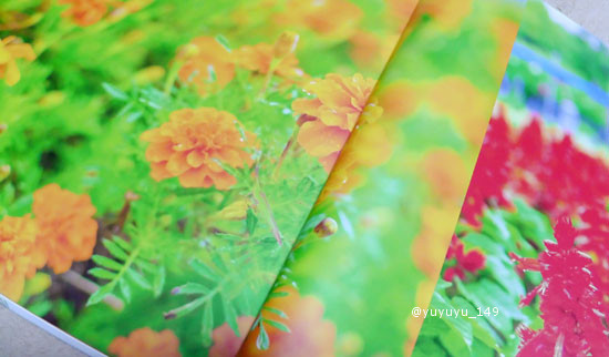 mybook24.jpg