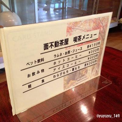 yosi21.jpg