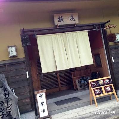 yosi24.jpg